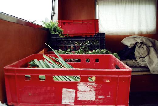 Gemüsekisten auf Klabauta